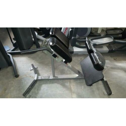Hammerstrength life fitness panatta matrix back extension
